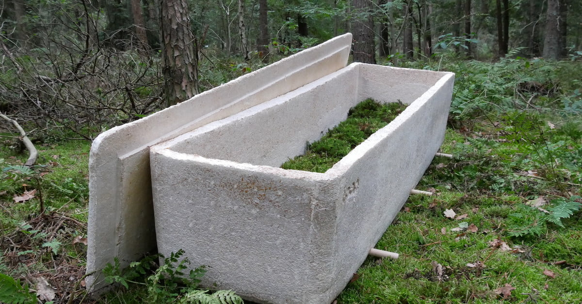 Fungus Coffin Doesn't Preserve Your Corpse. It Decomposes It