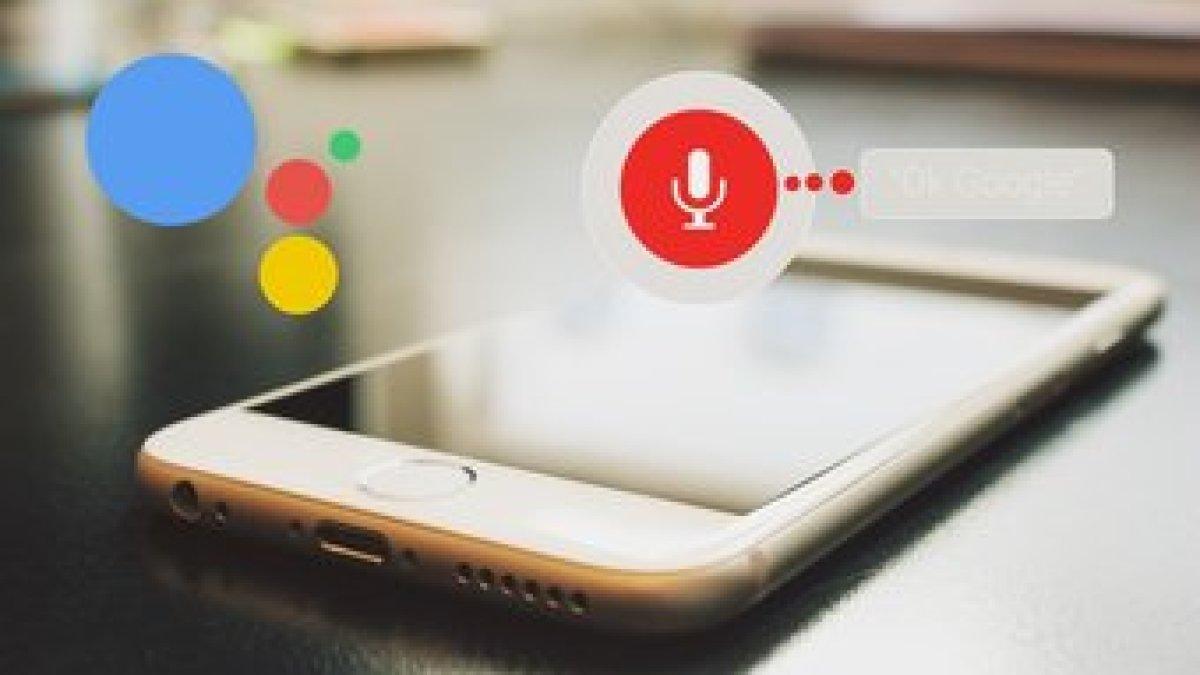 Google Assistant Settings Fi