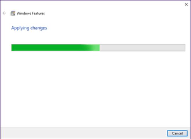 Windows Sandbox Missing Issue 5
