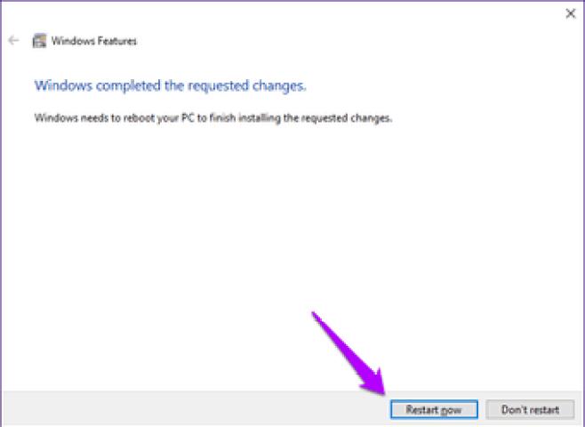 Windows Sandbox Missing Issue 6