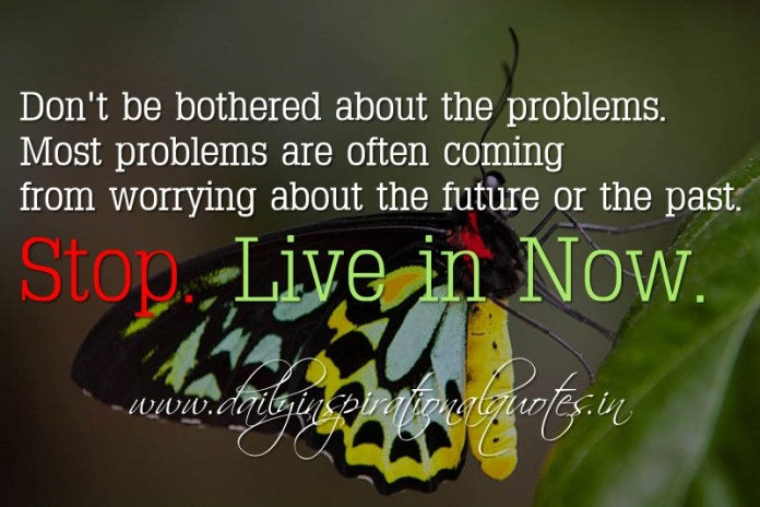 Don't be bothered about the problems. Most problems are often coming from worrying about the future or the past. Stop. Live in Now. ~ Anonymous ( Happiness Quotes )