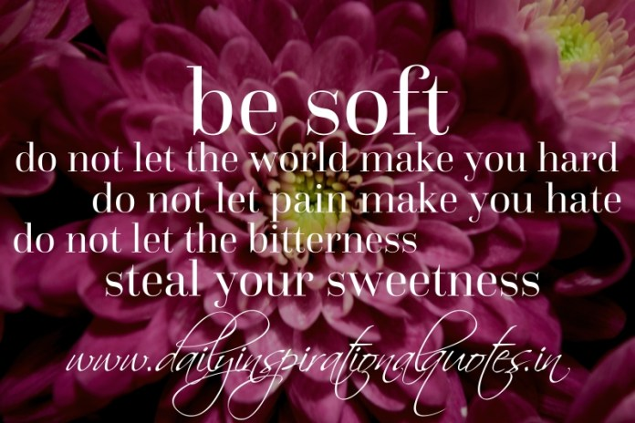 be soft, do not let the world make you hard. do not let pain make you hate. do not let the bitterness steal your sweetness.