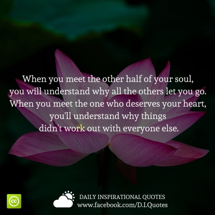 When you meet the other half of your soul, you will understand why all the others let you go. When you meet the one who deserves your heart, you'll understand why things didn't work out with everyone else.