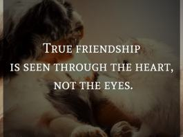 True friendship is seen through the heart, not the eyes.