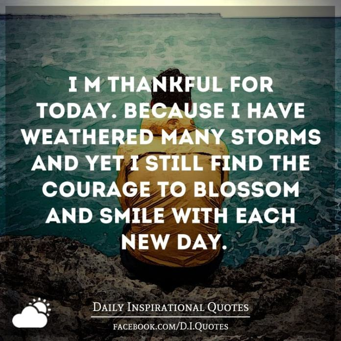I'm thankful for today. Because I have weathered many storms and yet I still find the courage to blossom and smile with each new day.