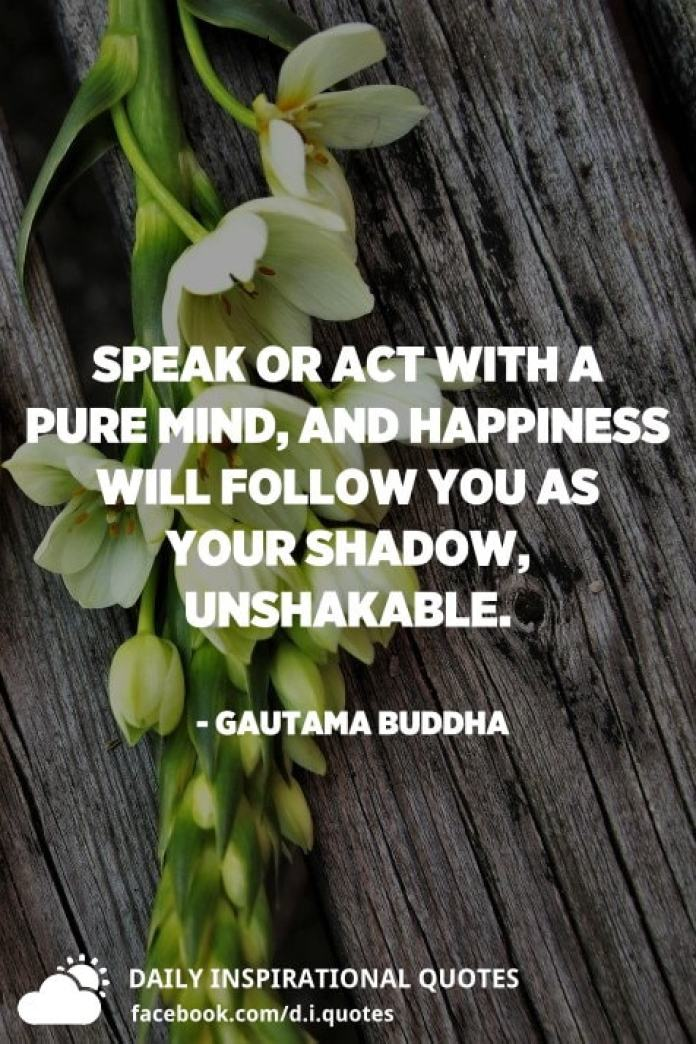 Speak or act with a pure mind, and happiness will follow you as your shadow, unshakable. - Gautama Buddha