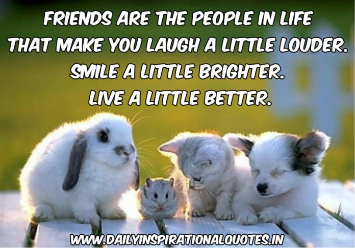 Friends are the people in life that make you laugh a little louder. smile a little brighter. live a little better. ~ Anonymous