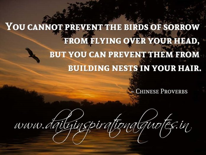 You cannot prevent the birds of sorrow from flying over your head, but you can prevent them from building nests in your hair. ~ Chinese Proverbs