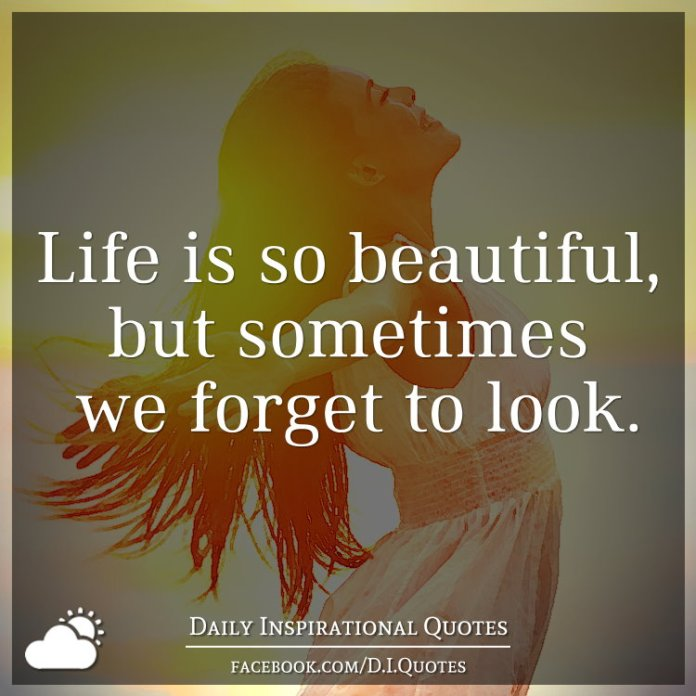 Life Is So Beautiful But Sometimes We Forget To Look