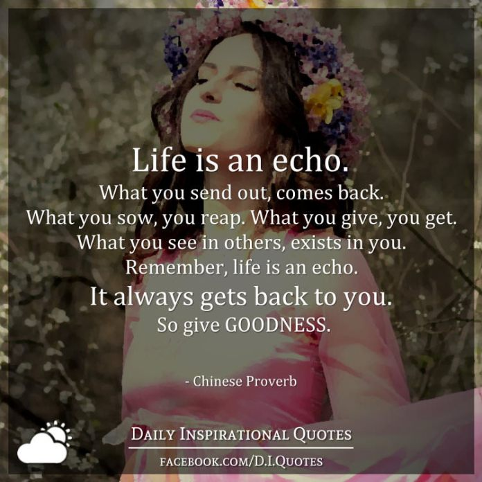 Life is an echo. What you send out, comes back. What you sow, you reap. What you give, you get. What you see in others, exists in you. Remember, life is an echo. It always gets back to you. So give GOODNESS. - Chinese Proverb