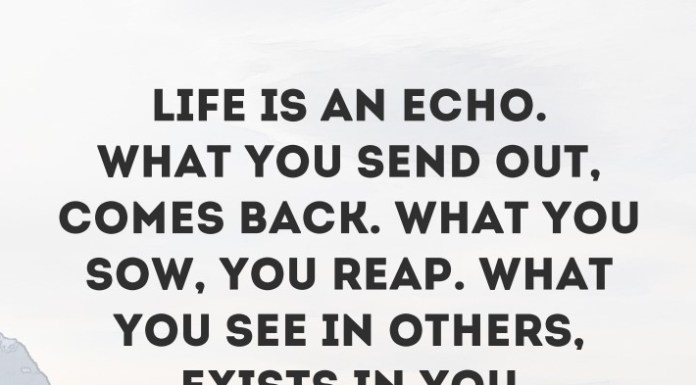 Motivation Archives Page 103 Of 127 Daily Inspirational Quotes