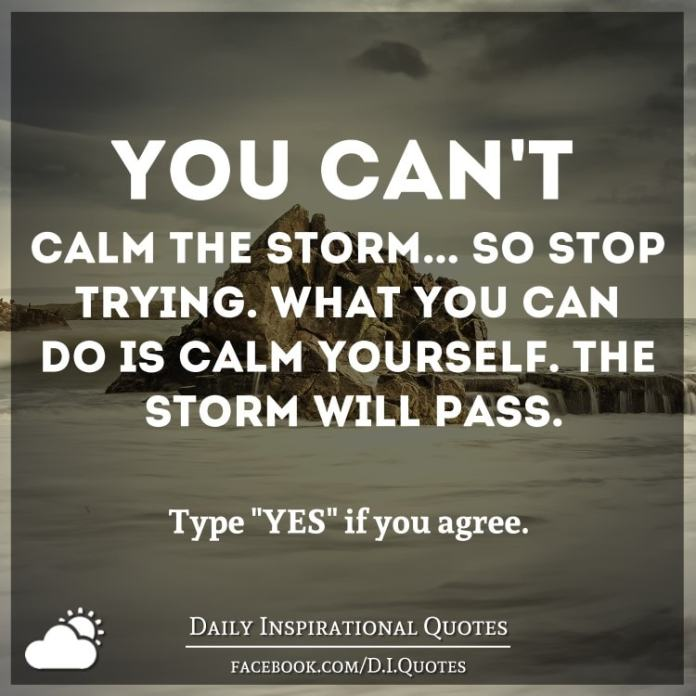 You can't calm the storm... so stop trying. What you can do is calm yourself. The storm will pass. - Timber Hawkeye