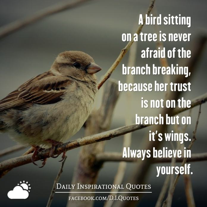 A bird sitting on a tree is never afraid of the branch breaking, because her trust is not on the branch but on it's wings. Always believe in yourself.