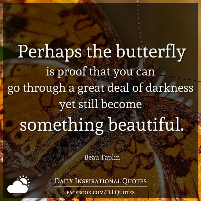 Perhaps the butterfly is proof that you can go through a great deal of darkness yet still become something beautiful. - Beau Taplin