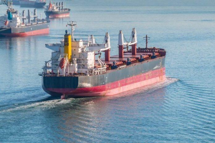 Small Bulk Carrier _Daily Logistics