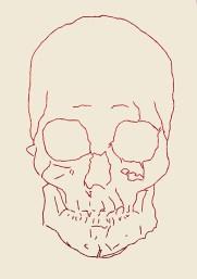 Redskull, 2015 – 2016 Ricamo su carta, filo rosso egiziano formato 21×29 cm