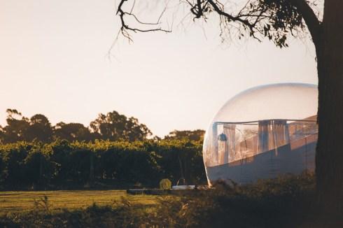 Coonawarra Bubble Tents and Coonawarra Bush Holiday ParkCoonawa