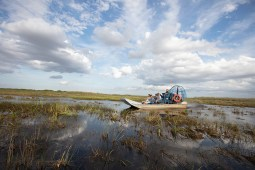 Everglades_Coopertown_Airboat Tour_People_Sawgrass_Boating-20180426-356
