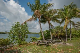 Oleta River State Park picnic area by the bay