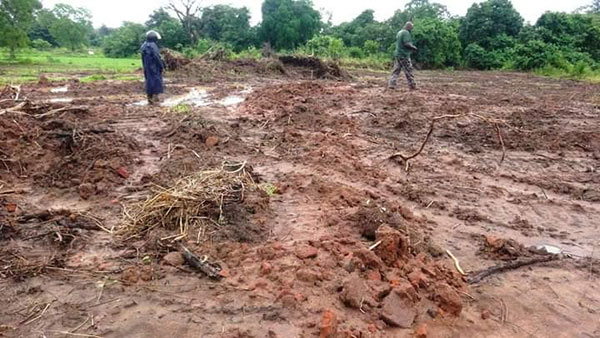 Man arrested for bulldozing reserve