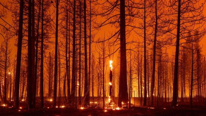New report will highlight 'stark reality' of warming