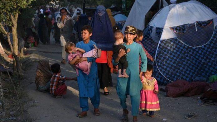 Taliban take 10th provincial capital as Ghazni falls