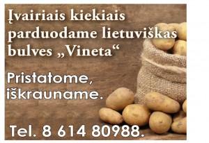 """Lietuviškos bulvės """"Vineta"""""""