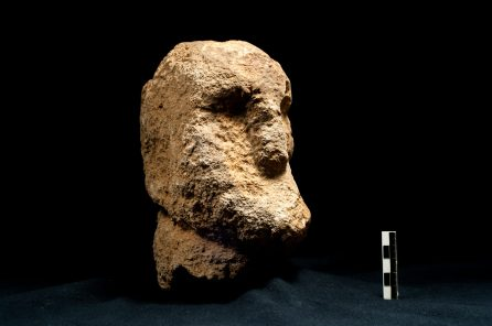 Limestone head from Göbekli Tepe, supposedly part of a sculpture similar to 'Urfa Man' (Photo: N. Becker, DAI).