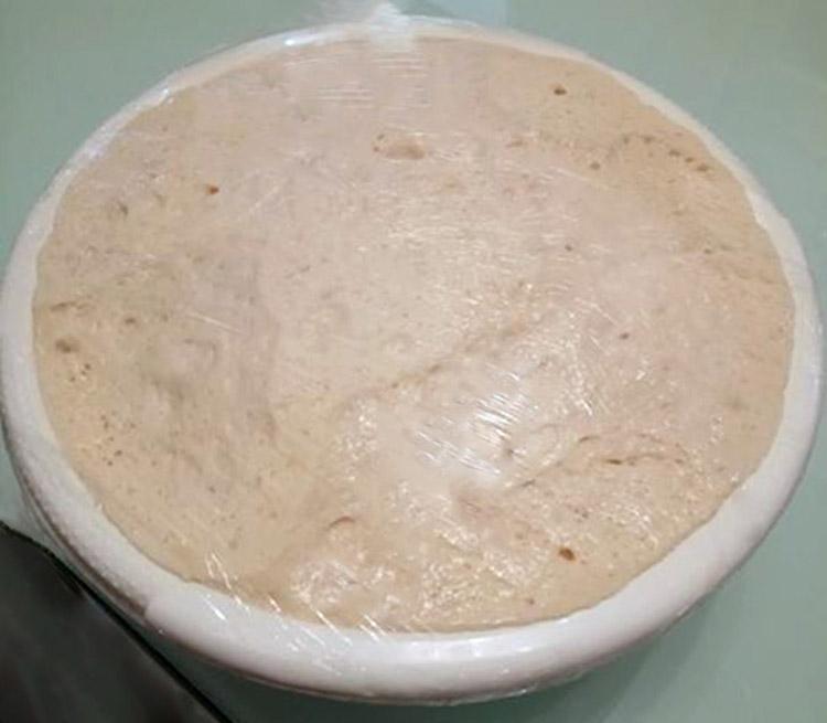 Ζύμη πασπαρτού (Acma)