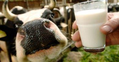 γάλα μακράς διαρκείας 3
