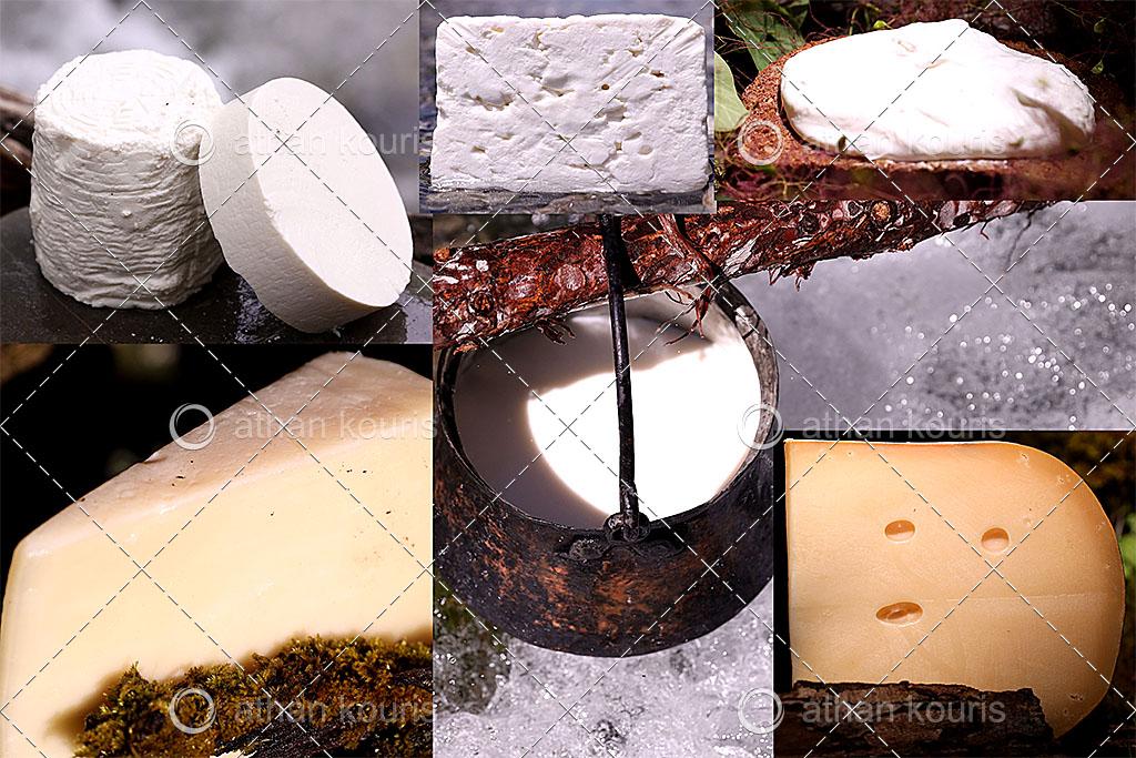 πρωτοσέλιδο - Οι 3 ή οι 4 τρόποι με τους οποίους παρασκευάζονται τα τυριά όλου του κόσμου