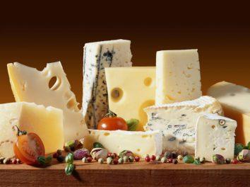 Μάθε ποιά είναι τα 5 είδη ζύμωσης στα γαλακτοκομικά