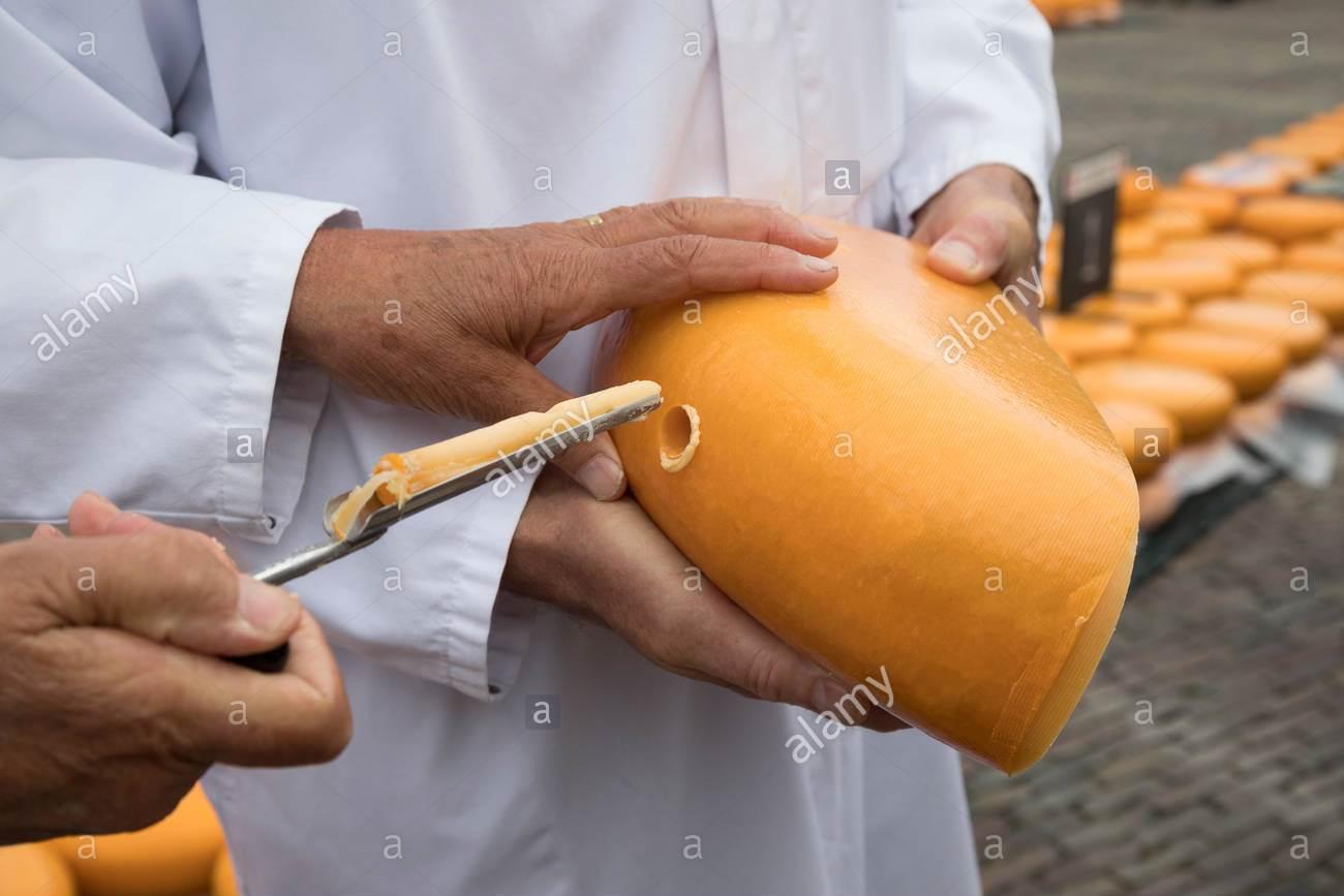 Tυροκλέφτης στην τυροκόμηση - Όταν ο κλέφτης είναι χρήσιμος!
