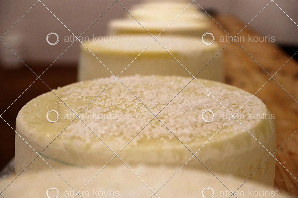 Πώς επιδρά το αλάτι στους μικροοργανισμούς των γαλακτοκομικών?