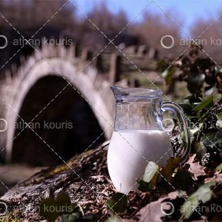 photo κανάτα με Γάλα P-10009 αγορά φωτογραφία κανάτα με γάλα on line