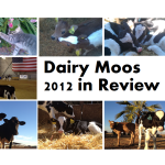 Dairy Moos 2012 Year End Review