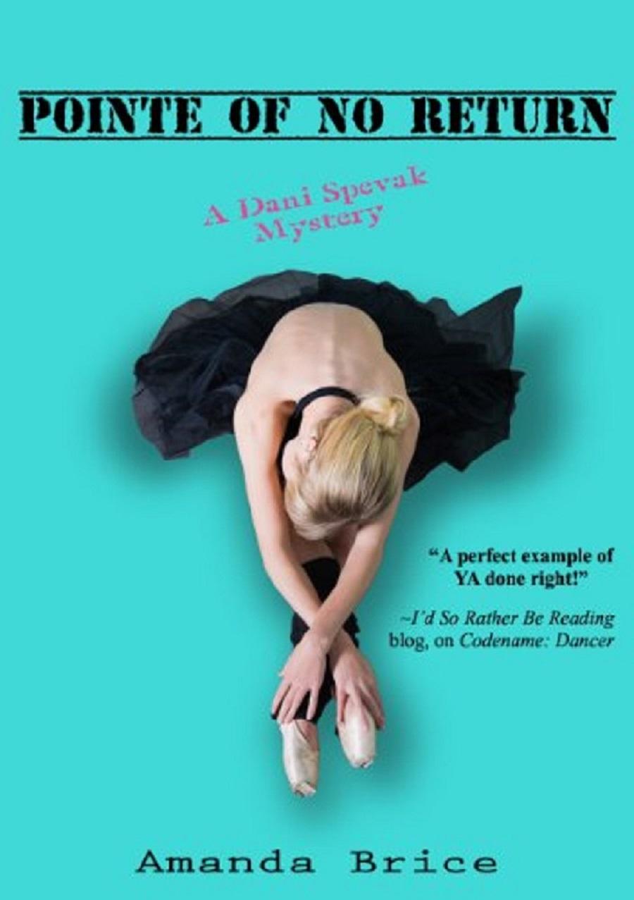Dani Spevak Mysteries series