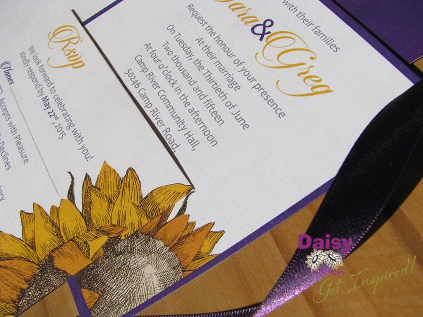 Sara's Sunflower close-up