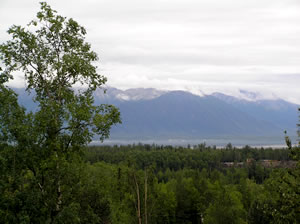 This is the view from my hotel in Wisilla Alaska