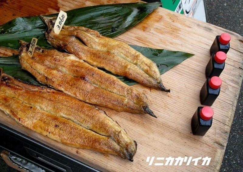 日本伏見稻荷京都鰻魚飯