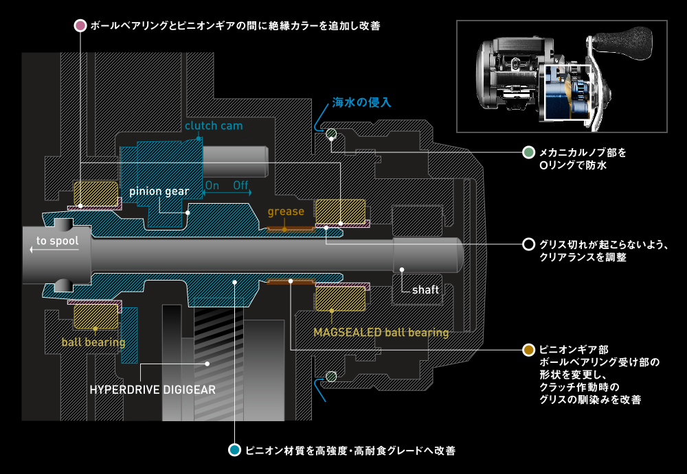 Clutch system cross section (image)