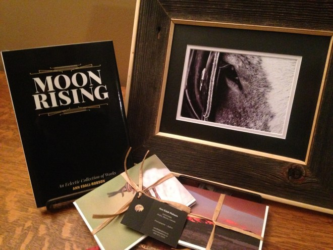 bar u, fundraiser, dinner, DAKATAMA, Moon Rising, photography