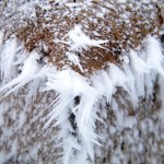 hoar frost, ice crystals, fence post