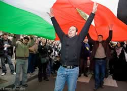 Aksi mendukung Palestina di Paris, Eropa