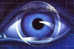 Mata (ikadijatim.org)