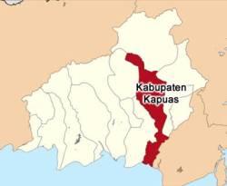 Ilustrasi - Peta Kabupaten Kapuas. (wikipedia)