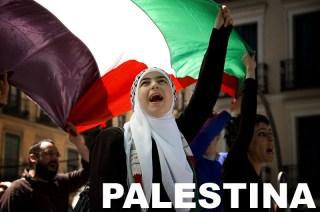 dukung palestina