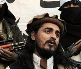 Hakimullah Mahsud, pemimpin gerakan Thaliban Pakistan (islammemo)