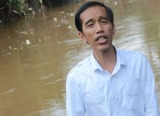 Gubernur DKI Jakarta, Joko Widodo (Foto: infonews)