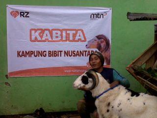 Penyaluran Domba oleh Masyarakat Ternak Nusantara.  (sari/rz)